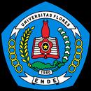 Flores University